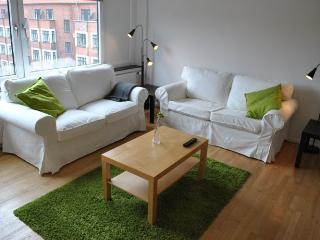 Beautiful Copenhagen studio apartment near trendy area - Copenhagen vacation rentals