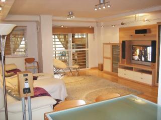 Luxury apartment with solarium - Torre del Mar vacation rentals