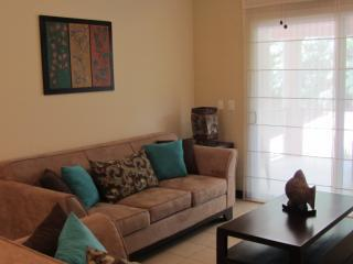 Living Room - Beautiful Beach Condo - Playa Azul - rentals