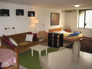 Mini loft in the center - Venice vacation rentals