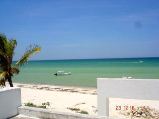 Casa Cocal Josefina by the Sea, INTERNET - Chicxulub vacation rentals