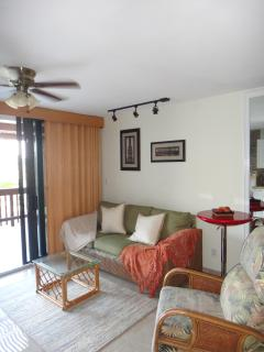 Newly Renovated luxurious Unit. Be My First Guest - Bentonville vacation rentals