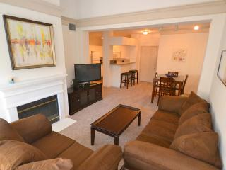 Wonderful Unit in Midtown2MD23502305 - Houston vacation rentals