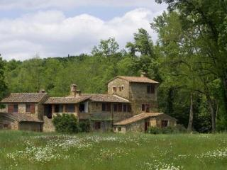 6 bedroom Villa with Internet Access in Monte San Savino - Monte San Savino vacation rentals