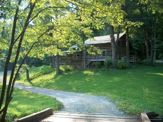 Viking Mountain Lodge - Log Cabin on Paint Creek - Hot Springs vacation rentals