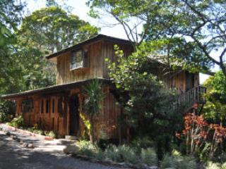 TreeTop House - TREETOP HOUSE charming artistic in Monteverde - Monteverde Cloud Forest Reserve - rentals