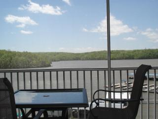 Towers Parkview Bay INDOOR POOL HOT TUB SAUNA - Osage Beach vacation rentals