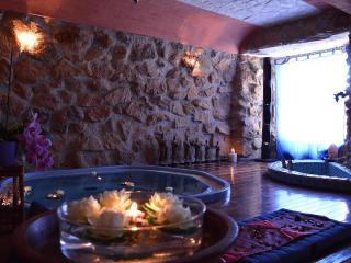 luxury  villa with pool,spa,tennis close to roma - Genazzano vacation rentals