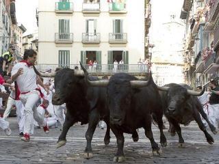 Vip Bullrunning Balconies Sanfermin Pamplona - Pamplona vacation rentals