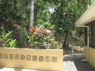 Apartment nearly in the rainforest - Gamboa vacation rentals