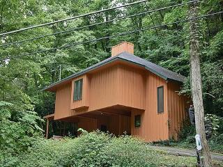 Bear Huggins - Gatlinburg vacation rentals