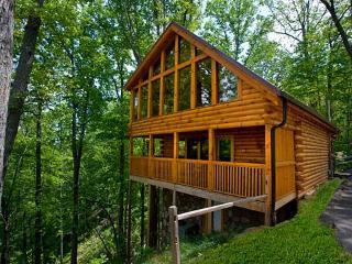 Bear In The Trees - Gatlinburg vacation rentals