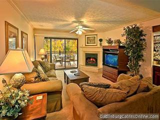 The Gatehouse 305 - Gatlinburg vacation rentals