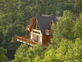 Bearly Ruff-N-It - Pigeon Forge vacation rentals