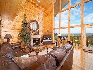 Too Much Fun - Pigeon Forge vacation rentals