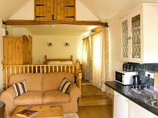 GWYNFRYN COTTAGE, woodburner, pet-friendly, open plan studio cottage near Pencader, Ref. 912385 - Pencader vacation rentals