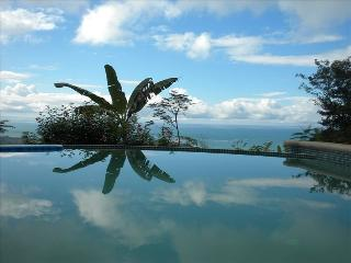 Casa Aracari,Vacation Uvita,Ocean View,Pool...WOW! - Pavones vacation rentals