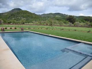 Elegant wine country retreat; panoramic views, pool - Fulton vacation rentals