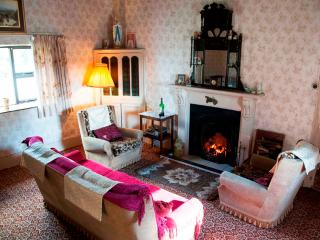 Old - Style - Traditional Farmhouse with Free WiFi - County Limerick vacation rentals