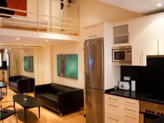 Modern Quiet Studio Loft - Madrid vacation rentals