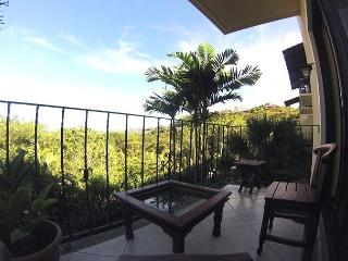 Nice Condo with Internet Access and A/C - Tamarindo vacation rentals
