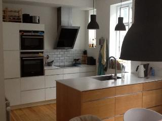 Nice 2 level Copenhagen apartment near Ryparken station - Copenhagen vacation rentals