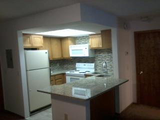 Winter Park, Fraser CO, Beautiful, granite counters etc - Fraser vacation rentals