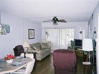 Clearwater Florida 2 Bedroom Condo - 3 Month minimum rental - Clearwater vacation rentals
