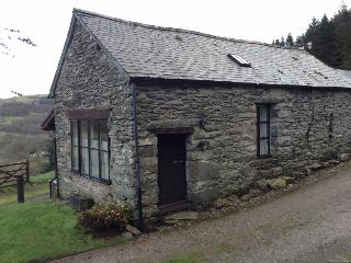 Tyn-y-fron Holiday Cottage, The edge of Snowdonia - Bala vacation rentals