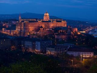 UNIQUE - Budapest vacation rentals