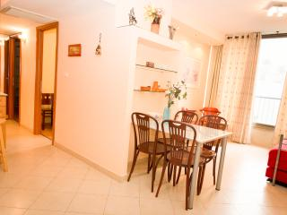 Renovated & fancy 2 bedrooms center Raanana #31 - Ra'anana vacation rentals