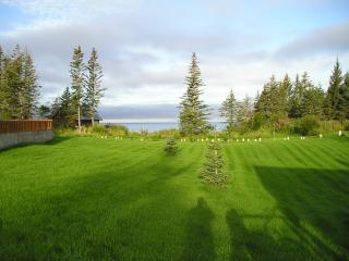 Ocean/Meadow View Cabin (Fourpeaked Cabin) - Anchor Point vacation rentals