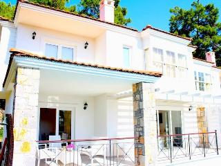 Bayview SD Villa 2| Luxury Villa with Private Pool - Gocek vacation rentals