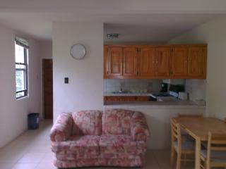 Welches Apt 4, 5 min walk to  beach; shops & more - Dover vacation rentals