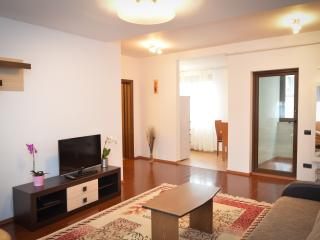 Luxry Apartment Aristide 5 - Bucharest vacation rentals
