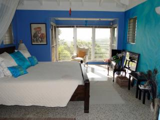 Mountain top Private Retreat - Romantic Bedroom - Saint Croix vacation rentals