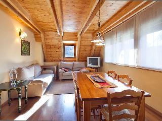 Salardu 4km. Baqueira duplex 3 bedrooms - Salardu vacation rentals