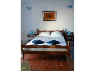 Plakoto Peaceful oasis downstairs apartment - Ios vacation rentals