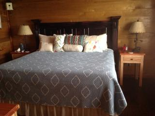 Perfect Cabin with Deck and Refrigerator - Lynchburg vacation rentals