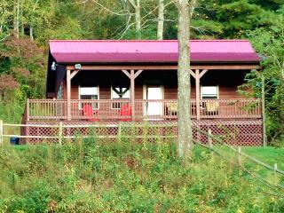 Deck Overlooking Creek & New River Trail - Pets OK - Galax vacation rentals