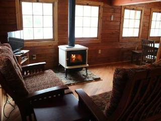 New Log Cabin on Two Picturesque Trout Streams - Titusville vacation rentals