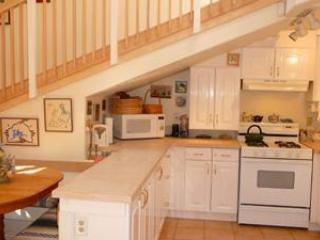 Delightful riverside Custom Home - Jemez Springs vacation rentals