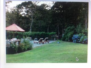 Heated Pool, Hottub,AC,WiFi,sleep16, 2 mi to beach - Oak Bluffs vacation rentals