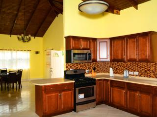 Modern & Affordable 2 Bedroom 3 Bathroom Apartment - Saint George's vacation rentals