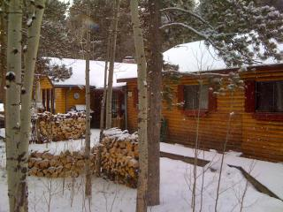 Charming Log Cabin for Peaceful Mountain Getaway! - Black Hawk vacation rentals