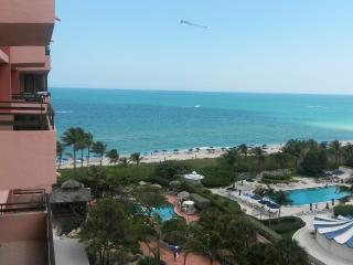 The Alexander Hotel Miami Beach FL - Unit 1109 - G - Miami Beach vacation rentals