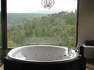 Earth Rose - A Comfy Getaway - Knysna vacation rentals