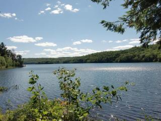 Comfortable townhouse on pristine lake! - Grantham vacation rentals