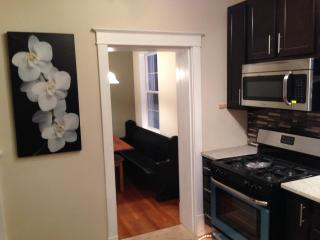 3 Bedroom Luxury Vacation rental in St Louis 2 - Saint Louis vacation rentals