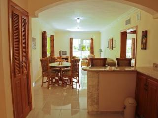 Fully Furnished 1BR Vacation Rental Palm Suite - Punta Cana vacation rentals